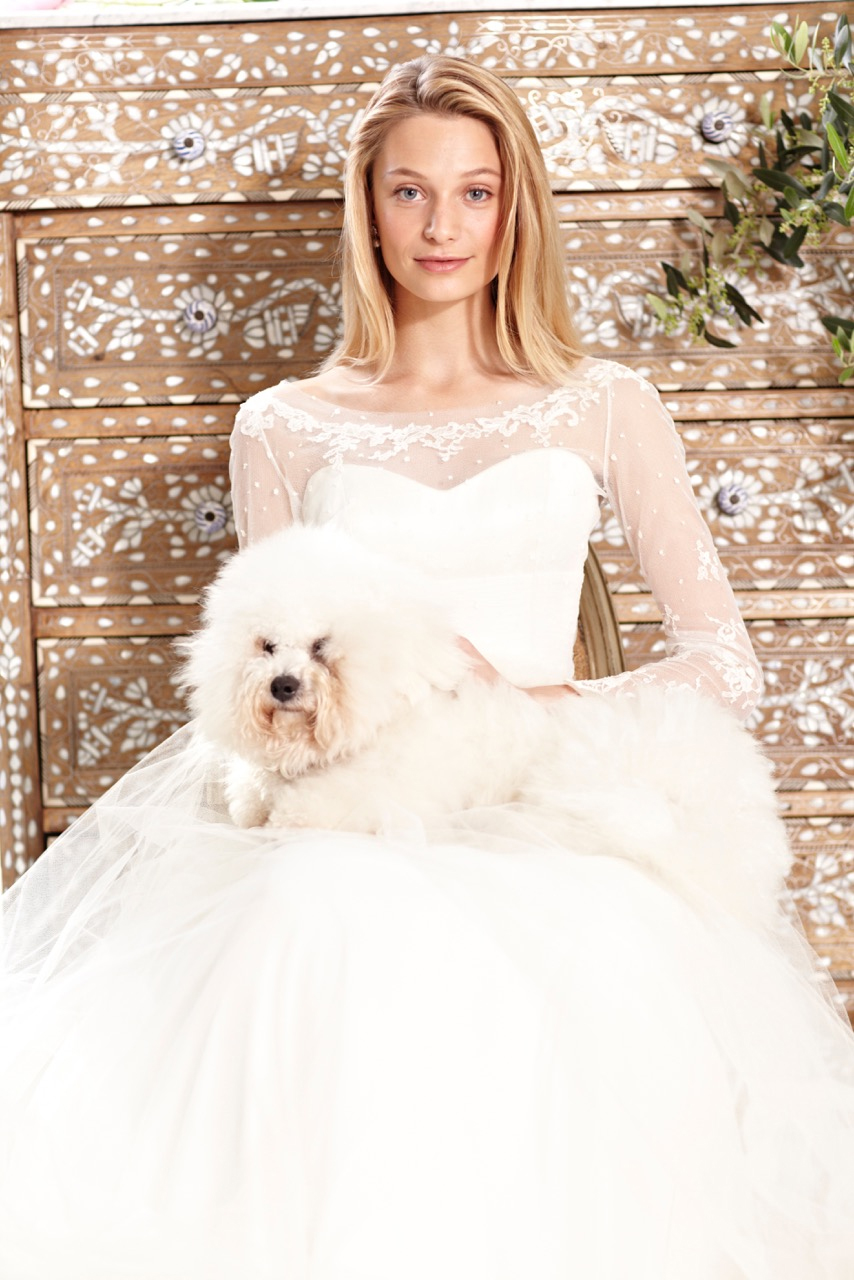 Summer 2015 Sample Sale of Phillipa Lepley Wedding Dresses