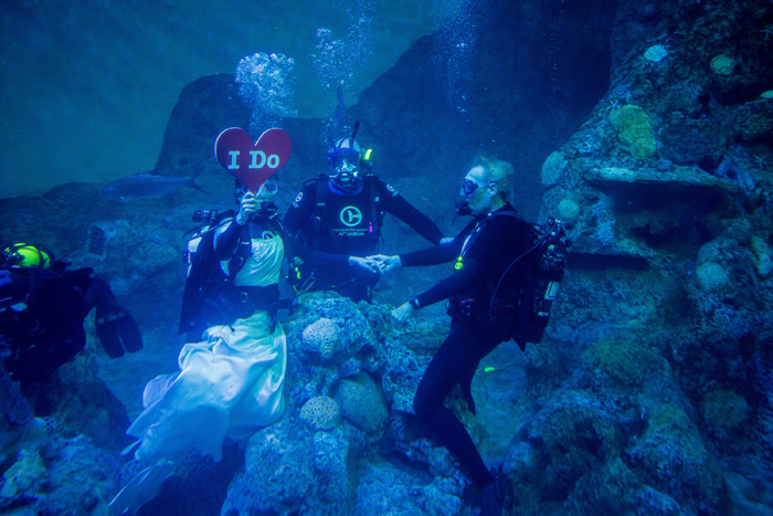couple-ties-the-knot-underwater-in-scuba-diving-ceremony-2