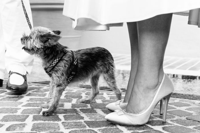 behind-the-lens-with-london-wedding-photographer-nick-tucker-9