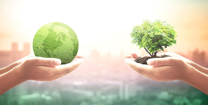 how-to-be-more-eco-friendly-as-a-business-3