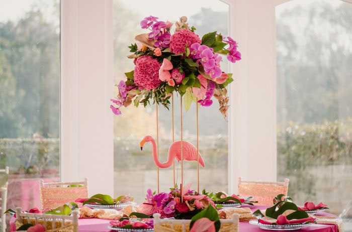 tropical-shoot-with-flamingos-worcestershire-9